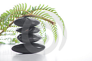 Zen Stones With A Fern Royalty Free Stock Image - Image: 8932886