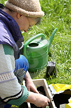 Gardening. Stock Photo - Image: 8947670