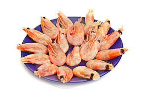Shrimp In Plate Stock Images - Image: 8948244