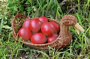 Uova Di Pasqua Fotografia Stock - Immagine: 8949640