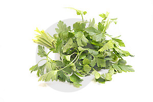 Parsley Royalty Free Stock Image - Image: 8950486