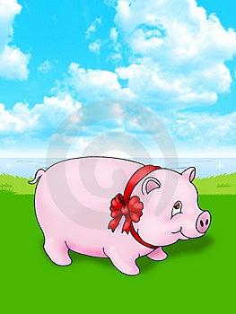 Pig Stock Photos - Image: 8952133
