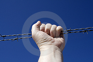 Barbed Wire Stock Image - Image: 8957691