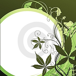 The Sun And Plants Stock Image - Image: 8958331
