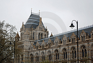 Natural History Museum Stock Photo - Image: 8962330