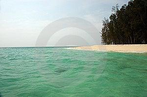 竹海岛 免版税库存图片 - 图片: 8962369