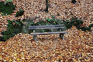 Park Bench Royalty Free Stock Photo - Image: 8963815