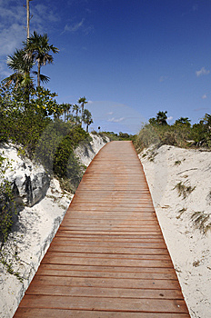 Walkway To The Beach Stock Images - Image: 8968984