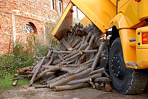 Unloading Wood Royalty Free Stock Image - Image: 8970186