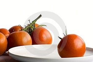 Tomatoes Royalty Free Stock Photo - Image: 8976475