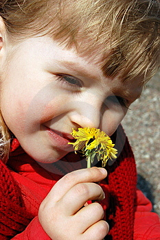 Girl Smelling A Flower Royalty Free Stock Image - Image: 8977506