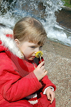 Smelling A Flower Royalty Free Stock Images - Image: 8977609