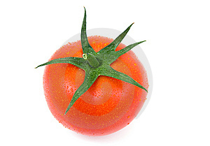 Tomato Isolated Stock Photo - Image: 8980070