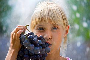 Grapes Royalty Free Stock Photo - Image: 8987445