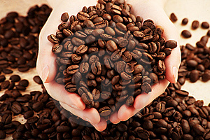 Coffee Beans Stock Photos - Image: 8988763