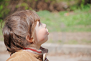 A Child Looks Up Stock Image - Image: 8990441