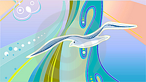 Seagull Royalty Free Stock Images - Image: 8991359