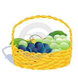 Basket With Grape Stock Photography - Image: 8992582