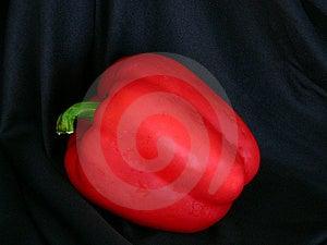 Bell rouge Photos libres de droits