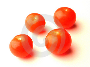 Baby Tomatoes Free Stock Photography
