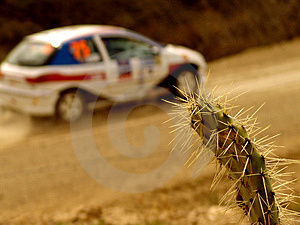 Rally Car Stock Photo