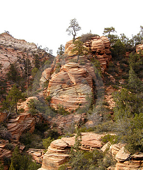 Zion National Park 3 Free Stock Photography