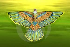 Kite Free Stock Images