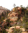 Zion National Park 3 Royalty Free Stock Photography