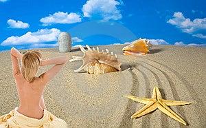 Paesaggio Con La Conchiglia E Pietre Sul Cielo Fotografia Stock - Immagine: 9003750