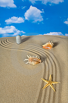 Landscape With Seashell And Stones On Sky Royalty Free Stock Photo - Image: 9003775