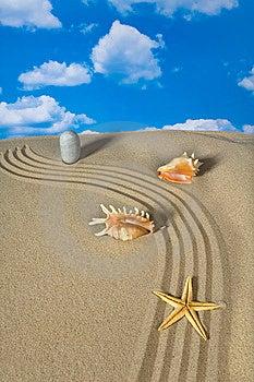 Krajobrazowi Seashell Nieba Kamienie Zdjęcie Royalty Free - Obraz: 9003775