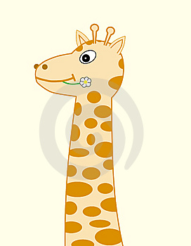 Giraffe With Camomile Stock Photography - Image: 9009402