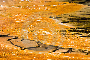 Grand Prismatic Spring Royalty Free Stock Photo - Image: 9019625