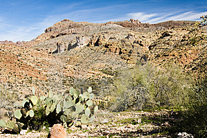 Desert Scenery Royalty Free Stock Photos - Image: 9019718