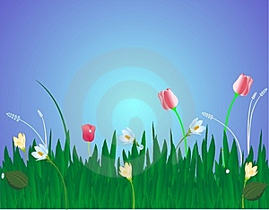 Blossoms In The Grass Illustration Royalty Free Stock Photo - Image: 9020915
