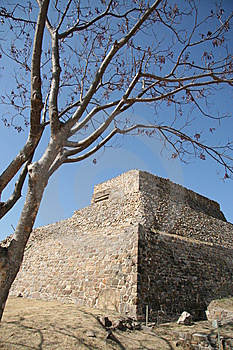 Ruins Of Monte Alban Royalty Free Stock Photography - Image: 9021117