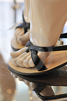 Fashion Shoes On Display Royalty Free Stock Images - Image: 9023279