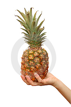 Pineapple Royalty Free Stock Photo - Image: 9028175