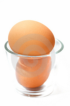 Fresh Chicken Eggs Royalty Free Stock Photo - Image: 9032195
