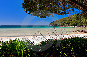 Golden Beach Abel Tasman Stock Photography - Image: 9039122