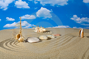 Landscape With Seashell And Stones On Sky Stock Images - Image: 9039784