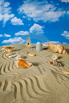Landschap Met Zeeschelp En Stenen Op Hemel Royalty-vrije Stock Afbeelding - Beeld: 9039796