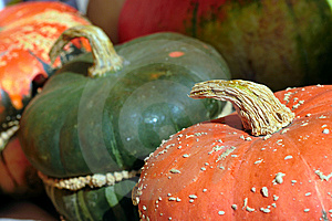 Pumpkin Close-up Royalty Free Stock Photos - Image: 9040138