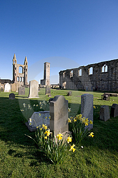 St Andrews Cathedral Grounds Royalty Free Stock Photography - Image: 9045687