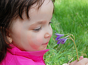 Little Girl With Flower Stock Images - Image: 9048014