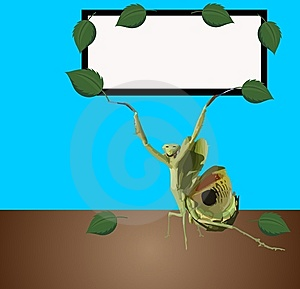 Praying Mantis Sign Board Stock Photo - Image: 9057290