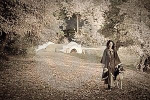 Fairy Tale Illustration Stock Image - Image: 9057311
