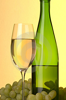 White  Wine Shot Royalty Free Stock Photo - Image: 9061555