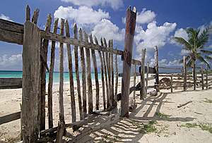 Fence On Cozumel Beach Royalty Free Stock Photo - Image: 9068045