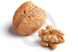 Walnut On White Stock Image - Image: 9068891